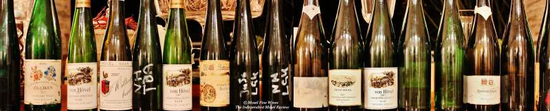 2007 Riesling Vintage Retrospective | Mosel Fine WInes | Picture | Bild