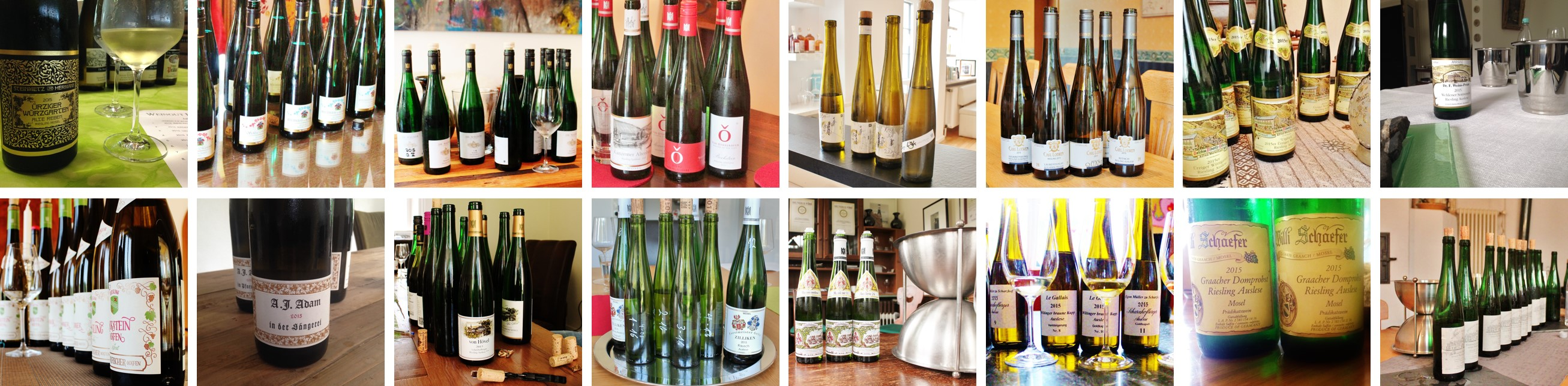 Vintage Report Mosel 2015 | Estates | Photo