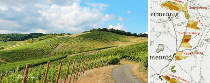 Krettnacher Euchariusberg | Gross Schock | Vineyard | Weinberg | Terroir | Picture | Bild