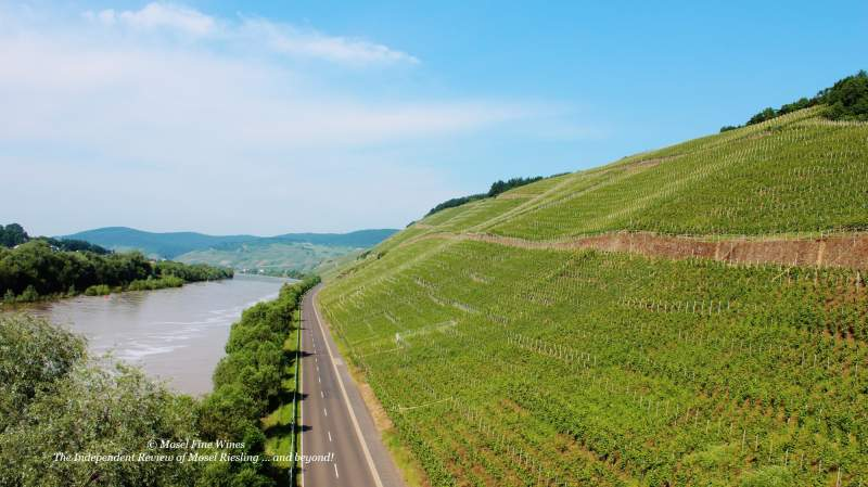 Brauneberger Juffer | Vineyard | Weinberg | Terroir | Picture | Bild