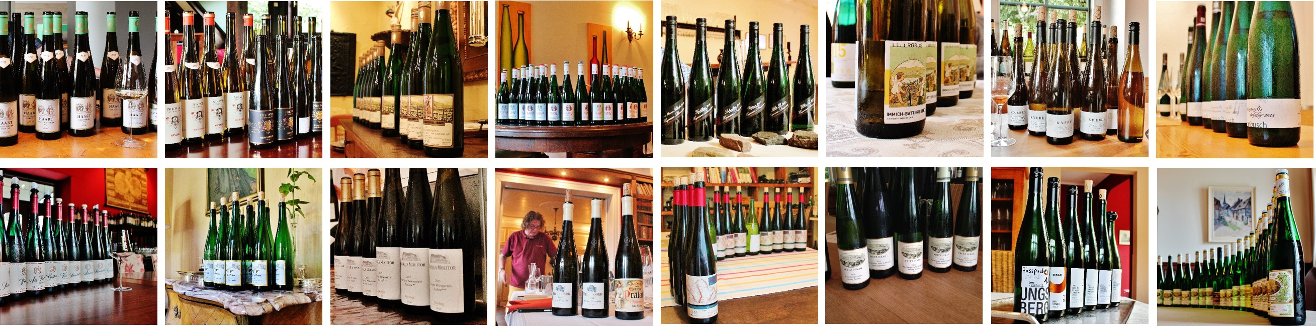 Mosel | Vintage Report 2015 | Picture | Photo