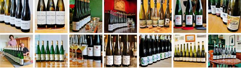 2017 Vintage Report | Mosel | Riesling | Look-Back | Vintage Highlights