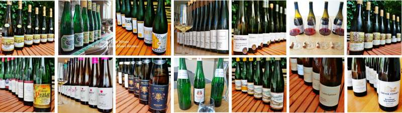 2019 Vintage Report | Mosel | Riesling | Wine | Picture