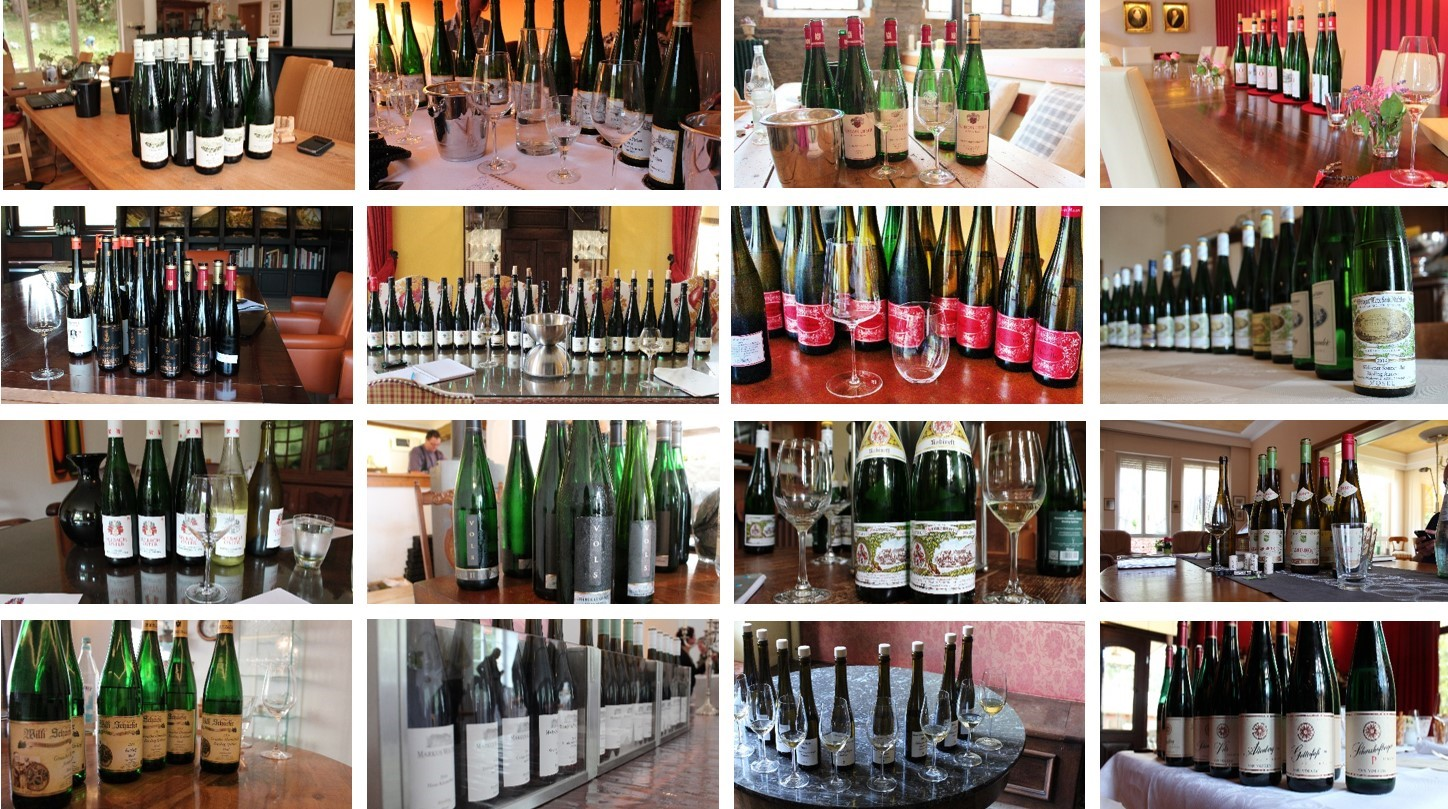 Mosel Vintage 2014 | Kabinett Highlights
