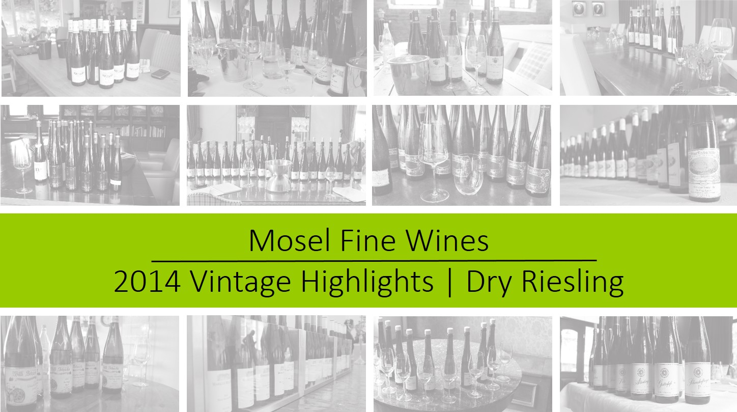 Mosel Vintage 2014 | Off-Dry Riesling Highlights